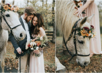 Minden vágyad egy lenyűgöző lovas esküvő?